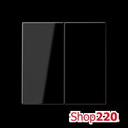 Клавиша 2-кл., черный, Jung A500 A595SW