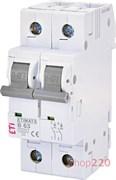 Автоматический выключатель 63А, 2 полюса, тип B, Eti 2113522