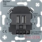 USB розетка для зарядки устройств, двойная, антрацит, Berker 260205