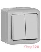 Выключатель IP44 2-клавишный универсальный, серый, 782381 Legrand Forix