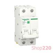 Автоматический выключатель 16А, 2 полюса, уставка В, Resi9 R9F02216 Schneider Electric