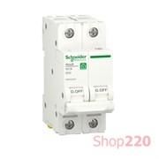 Автоматический выключатель 50А, 2 полюса, уставка В, Resi9 R9F02250 Schneider Electric