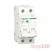 Автоматический выключатель 63А, 2 полюса, уставка В, Resi9 R9F02263 Schneider Electric