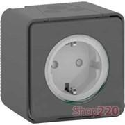 Розетка электрическая 220В, накладная IP55, черный, Mureva Styl Schneider MUR36034